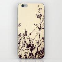 Silhouette II iPhone & iPod Skin