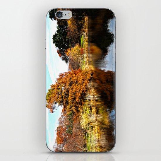 Arnold Arboretum iPhone & iPod Skin