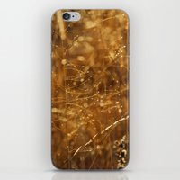 Sunlight iPhone & iPod Skin