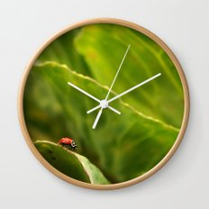 Lady Bug in Nature Wall Clock