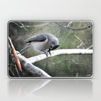 Tufted Titmouse Laptop & iPad Skin