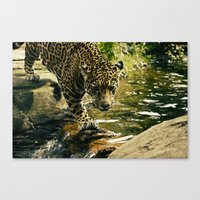 The Life Of Cartier Canvas Print