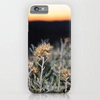 Sagebrush iPhone 6 Slim Case