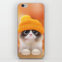Shui The Kitten iPhone & iPod Skin