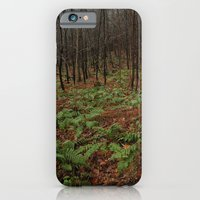 Autumn Ferns iPhone 6 Slim Case