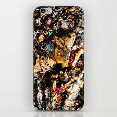 Basalt iPhone & iPod Skin