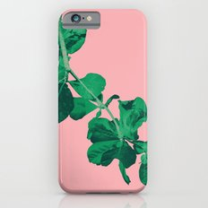 Branch Floripa iPhone 6 Slim Case