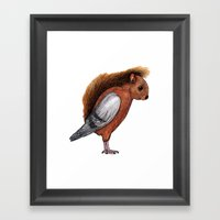 Squigeon Framed Art Print