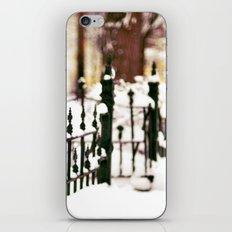 November Snow iPhone & iPod Skin