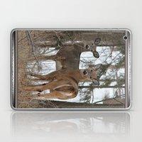 White-Tailed Deer in Winter Laptop & iPad Skin