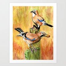European Jays Art Print