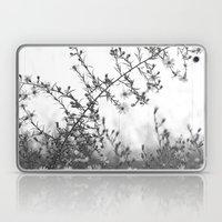 Wild Asters Botanical BW Laptop & iPad Skin