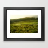 Sheep in the mist Framed Art Print