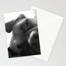Lazy Dog Stationery Cards