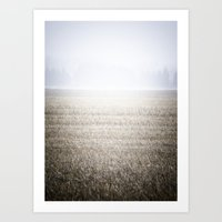 The Lawn Art Print