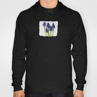 Muscari - Blue Grape - J… Hoody