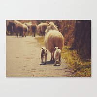 Love Mama. Canvas Print