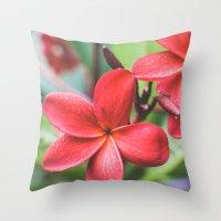 Soft Summer Plumeria Throw Pillow