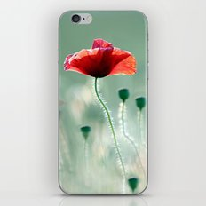 A summer long... iPhone & iPod Skin