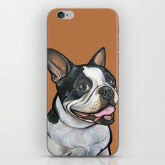 Snoopy the Boston Terrier iPhone & iPod Skin