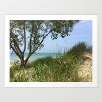 Indiana National Lakeshore Art Print