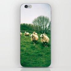 An Audience iPhone & iPod Skin