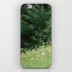 Wildflowers 2 iPhone & iPod Skin