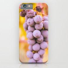 In vineyard iPhone 6 Slim Case