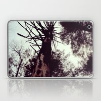 Dead Tree Laptop & iPad Skin
