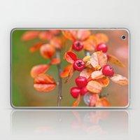 Autumnal Cotoneaster 9379 Laptop & iPad Skin