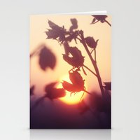 Garden Sunset Stationery Cards