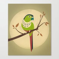 Green Cheek Conure Canvas Print