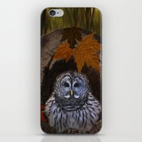 Barred Owl iPhone & iPod Skin
