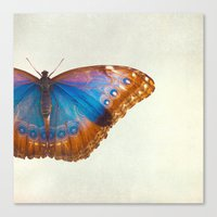 Coppertop Canvas Print