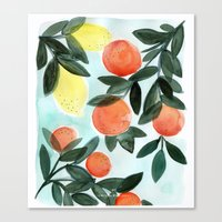 Dear Clementine Canvas Print