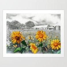girasoli Art Print
