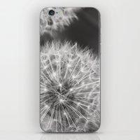 Dandelion Wishes iPhone & iPod Skin