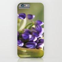 iPhone & iPod Case featuring burst by Kristen Mintz