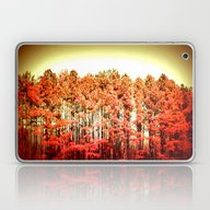 Sunrise Trees Laptop & iPad Skin