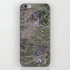 Burrowing Owl pair iPhone & iPod Skin