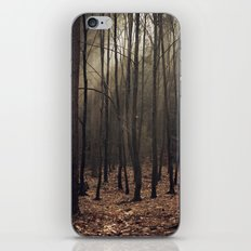Winter magic forest iPhone & iPod Skin