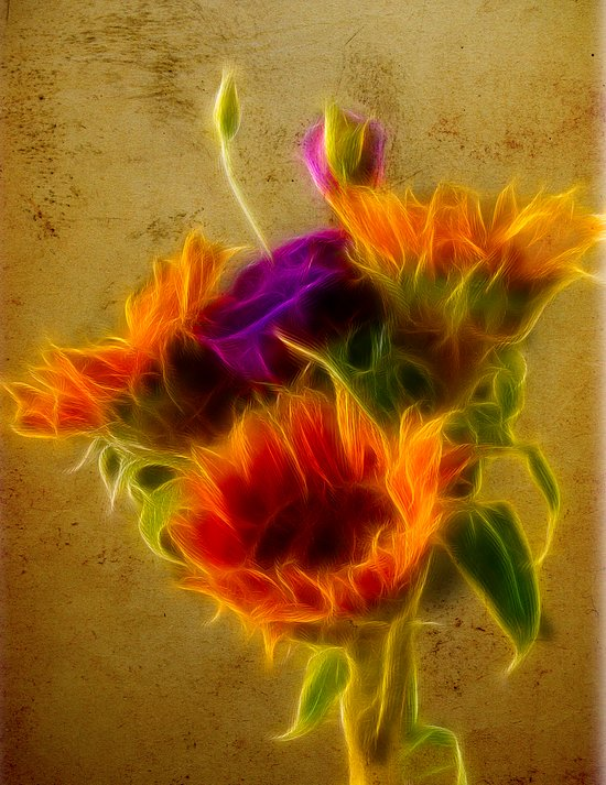 Three sunflowers and a Lisianthus Art Print