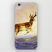 Pronghorn in the Morning iPhone & iPod Skin