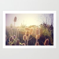 Beautiful sun Art Print