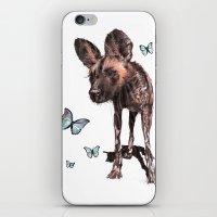 Painted Dog iPhone & iPod Skin