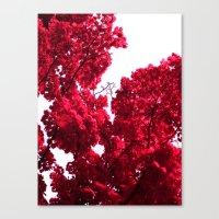 Red Tree V Canvas Print