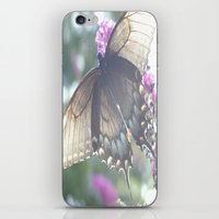 Sheer Butterfly iPhone & iPod Skin