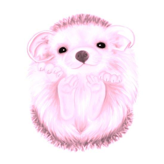 Baby Hedgehog- Pink Art Print