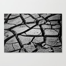 Cracked Earth Canvas Print
