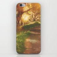 Oak Trail iPhone & iPod Skin